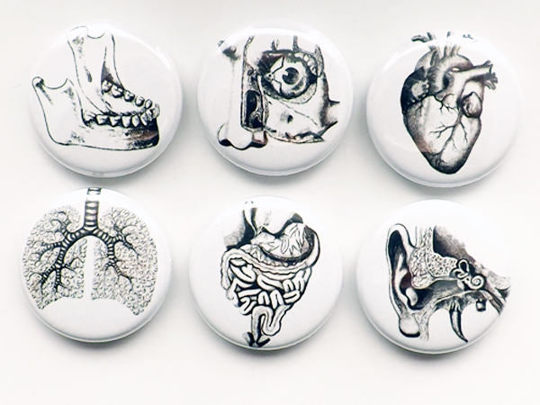 Human Anatomy Gift him medical student button pins lungs anatomical heart party favor magnets goth halloween stocking stuffer men rn md pa-Art Altered