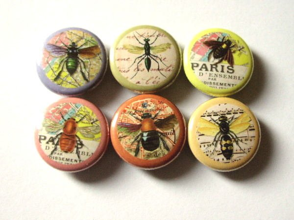 Insects fridge refrigerator magnet set nature bugs bee gift party favor stocking stuffer flair button pins rustic home decor science garden-Art Altered