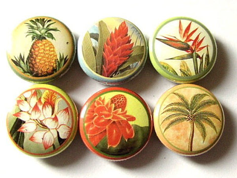 Hawaiian Flower fridge magnets set of six Hawaii floral tropical palm tree pineapple bird of paradise stocking stuffer flair button pins-Art Altered