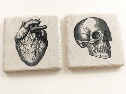 Ceramic Tile Coasters Anatomy gift rustic look porcelain cork back satin finish physician assistant nurse practitioner goth science biology-Art Altered