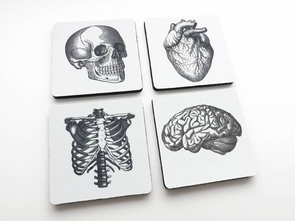 Drink Coasters Human Anatomy hostess graduation gifts medical student goth skull anatomical heart dorm decor stocking stuffer geekery brain-Art Altered