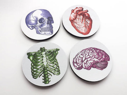 Nursing School Graduation medical coworker gift coasters anatomy student physician assistant nurse practitioner for him biology cardiology-Art Altered