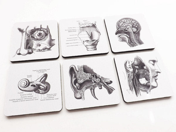 ENT Drink Coasters gift set ear nose throat head neck doctor otolaryngologist medical school graduation stocking stuffers human body anatomy-Art Altered