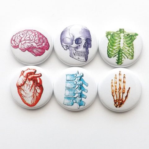Anatomy Fridge Magnets Set, Vintage Anatomy Buttons, stocking stuffers, coworker gift, vintage heart, geek button pin graduation, dorm decor-Art Altered
