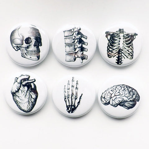 Button Pins Anatomy brain skull anatomical heart med medical student gift stocking stuffer party favor magnet teacher goth nurse doctor grey-Art Altered