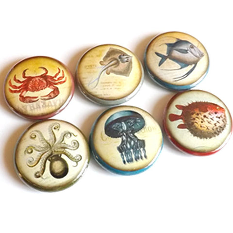 Sea Fish Ocean Beach Pinbacks button Pins Badges magnets coastal stocking stuffers octopus jellyfish party favor nature flair nautical gifts-Art Altered