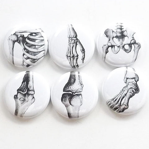 Joints Gift anatomy magnet set doctor teacher nurse bones arthritis hip shoulder wrist ankle elbow knee ortho physical therapy goth student-Art Altered
