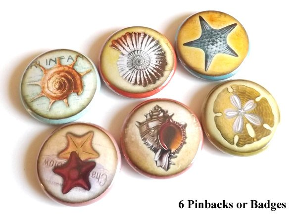 Sea Shells button pins badges stocking stuffers starfish sand dollar party favors nature nautical gifts magnets coastal beach ocean novelty-Art Altered