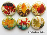 Autumn decor leaves buttons pins pinbacks fall nature party favor stocking stuffer shower hostess gift home magnet thanksgiving holiday warm-Art Altered