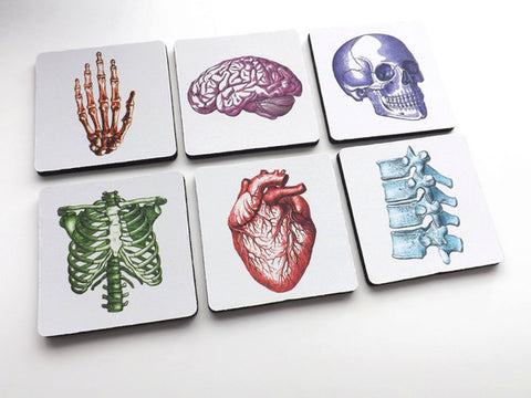 Doctor Nurse gift drink coasters medical school anatomy graduation party anatomical heart science goth hospital staff physician assistant-Art Altered