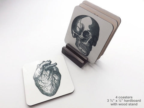 Anatomy 3.75 inch hardboard Coasters cork back graduation gift skull anatomical heart brain halloween medical goth decor-Art Altered