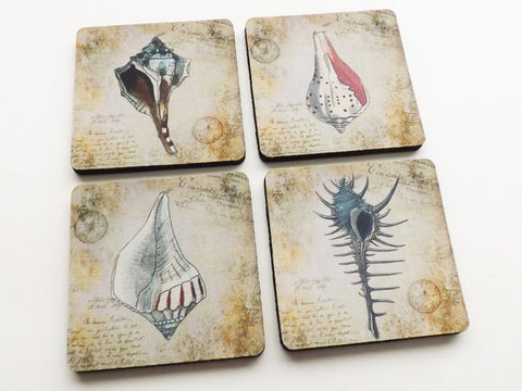 Rustic Sea Shells Coasters beachy home decor housewarming hostess gift-Art Altered
