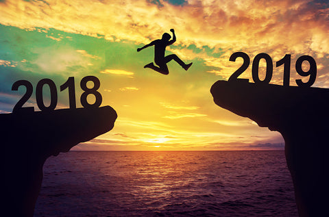 Take a flying leap into 2019!
