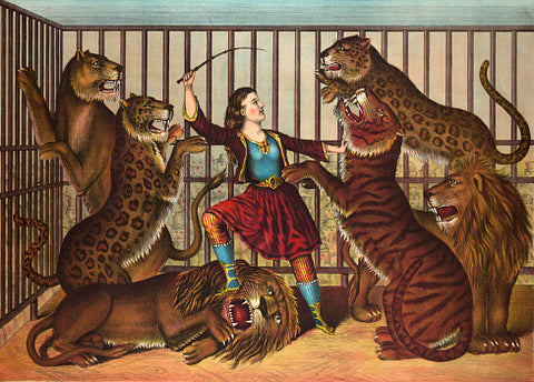 Mistress of Jungle Cats