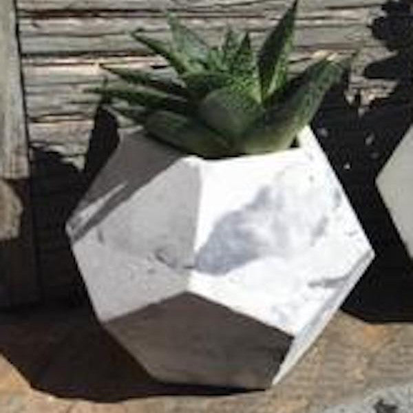Dodecahedron Planter