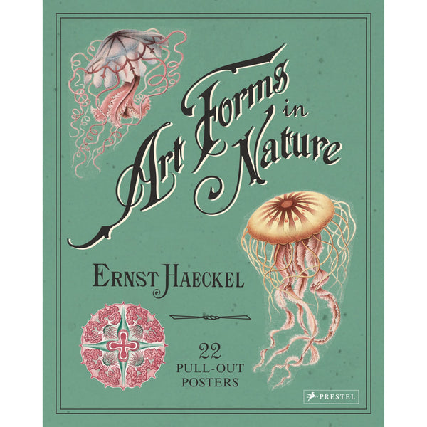 Art Forms in Nature - 22 Pull Out Posters by Ernst Haeckel