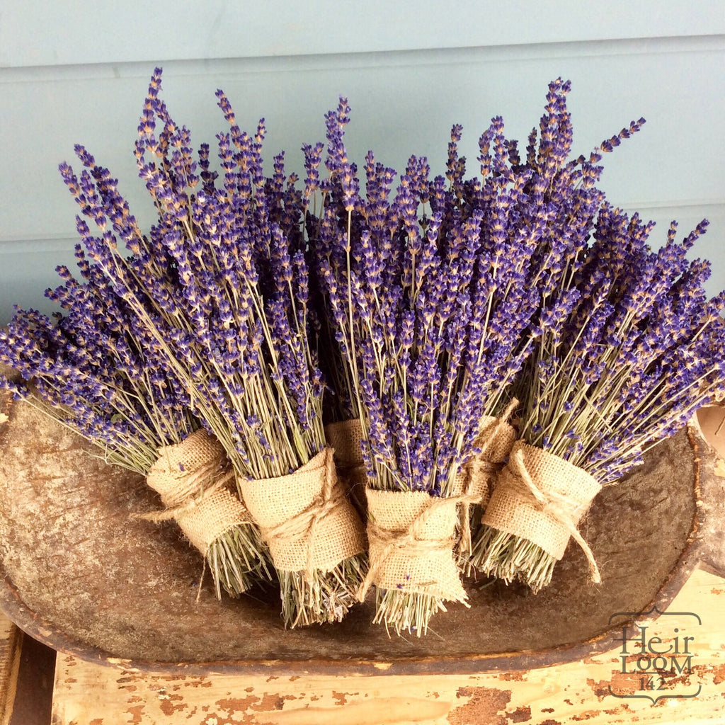 Dried Local Lavender Bundle