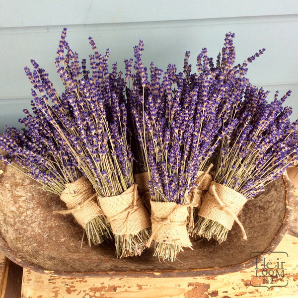 Fresh Lavender Bundle