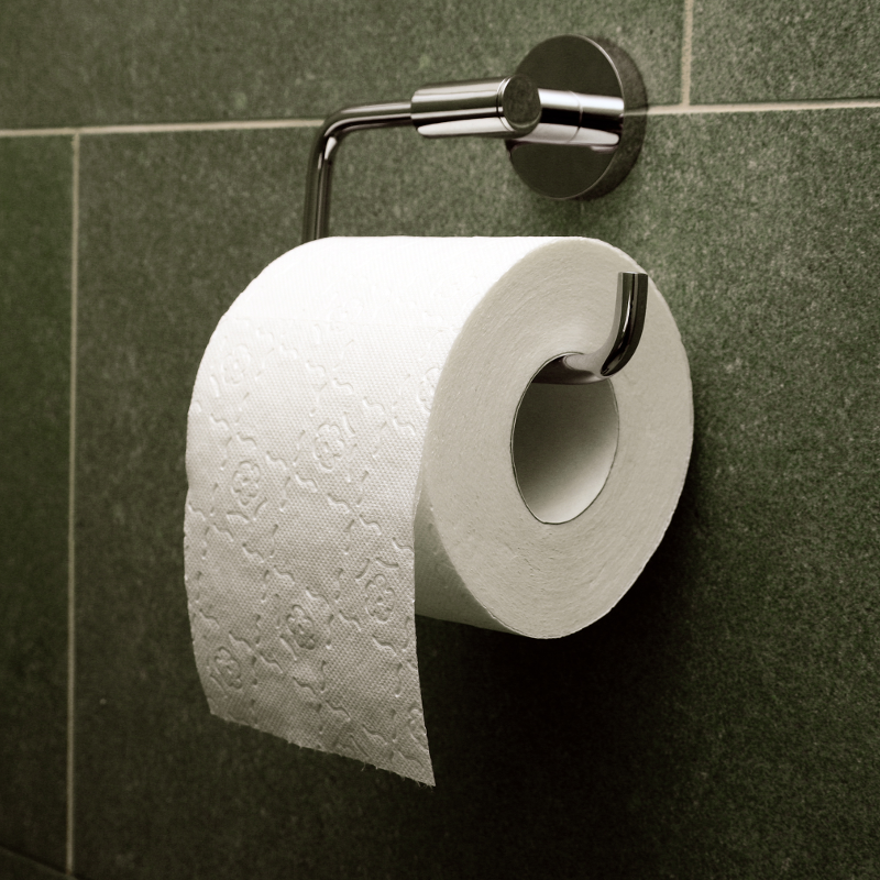 The Ultimate April Fools Prank: Toilet Papering a House