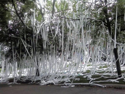crazy-toilet-paper-prank-for-end-of-year-at-school
