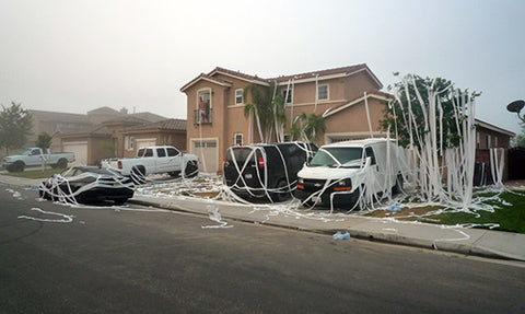 Funny Prank Idea Toilet Paper Front Yard Mess