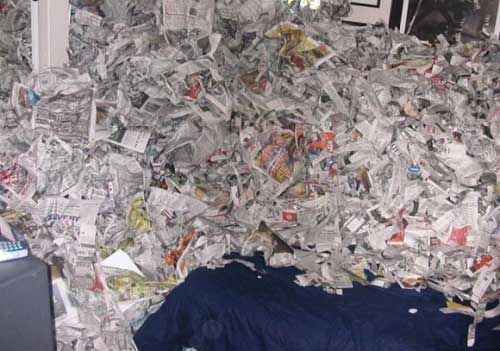 newspapers-on-campus-room-mates-prank
