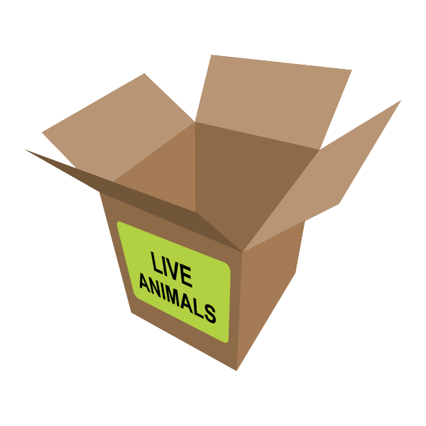 Live_Animals_Prank_Box_Ship_Your_Friends_Nothing_832ba8eb-b5d3-471b-a91a-bfcbf7d1506d_grande