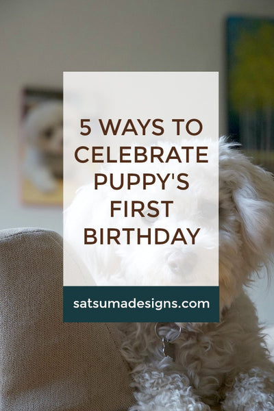 5 Ways to Celebrate a Puppy's First Birthday | Photo Canvas Giveaway