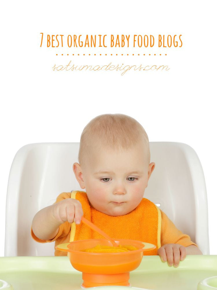 7 Best Organic Baby Food Blogs