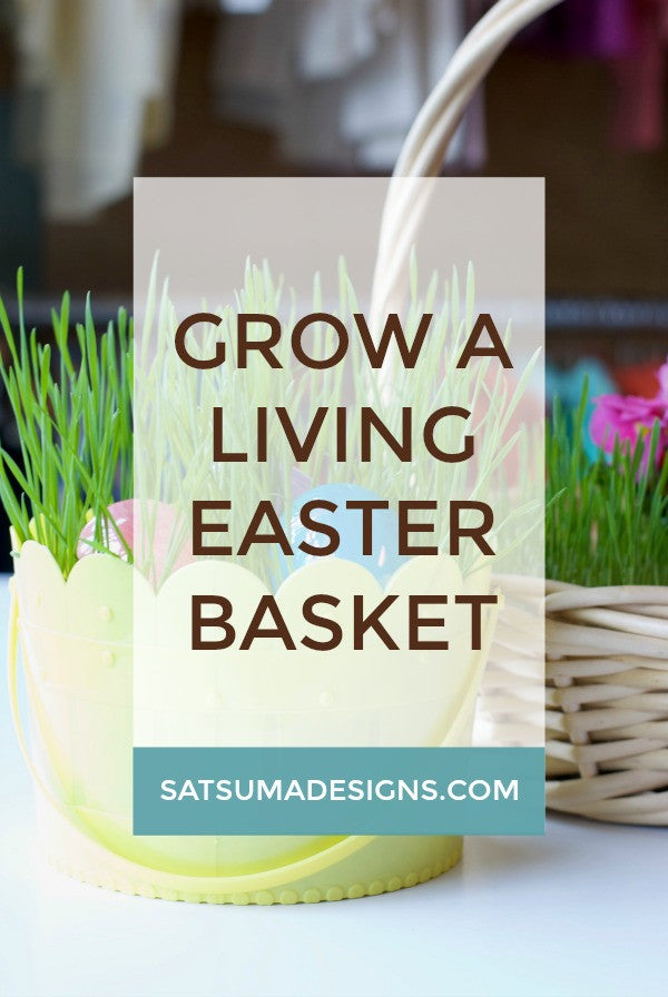 Grow a Living Easter Basket
