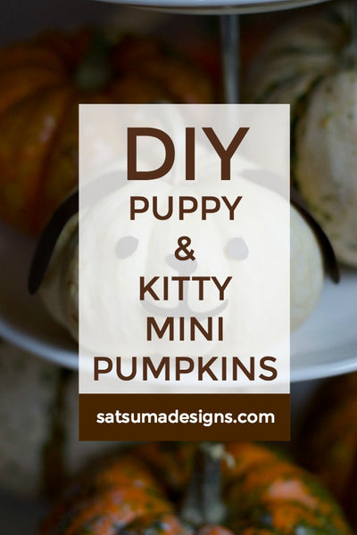 DIY Puppy and Kitty Mini Pumpkins