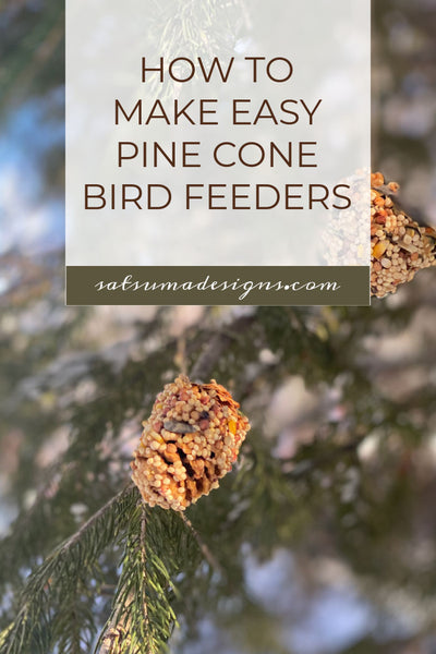 How To Make Easy Pine Cone Bird Feeders