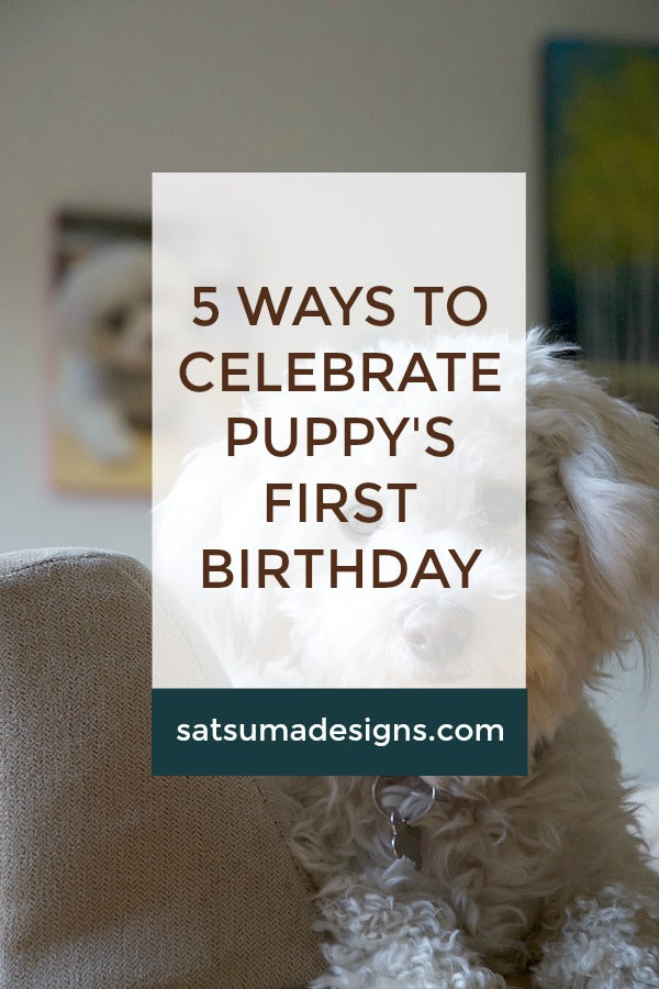 Click through to see how we celebrate our puppy's first birthday with ease and fun! | dog birthday party | puppy party | SatsumaDesigns.com | #momsbestfriend #puppy #giveaway