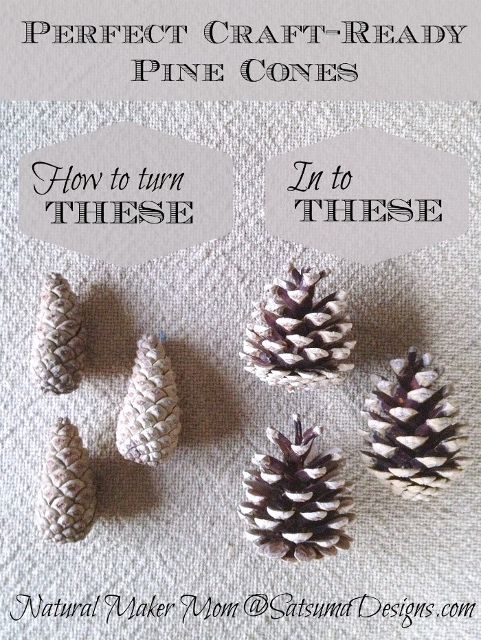 craft ready pine cones like magic from the natural maker mom