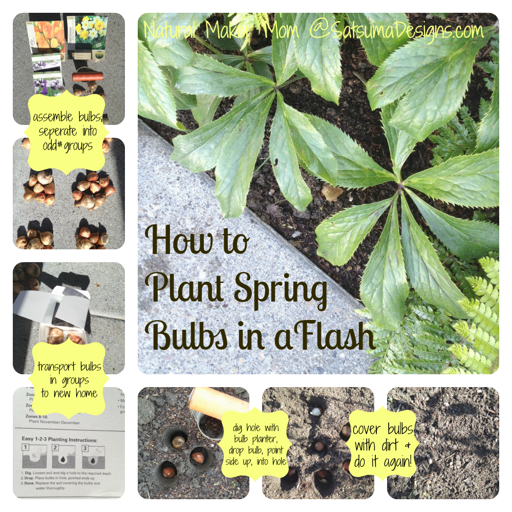 how to plant spring blooming bulbs quickly from natural maker mom at satsuma designs