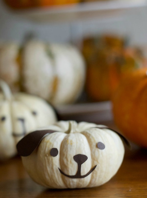 Click through to see how I made my easy DIY puppy and kitty mini pumpkins for Halloween fun | Halloween decorating ideas | Jack-o-lantern alternatives | SatsumaDesigns.com #halloween #jackolantern