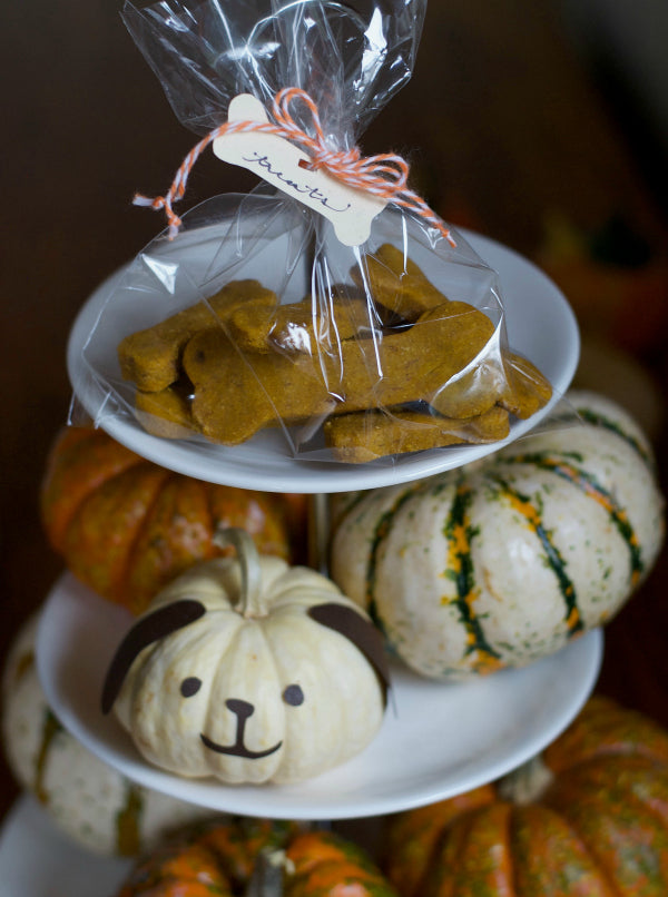 Click through to discover my easy recipe for peanut butter pumpkin dog treats | SatsumaDesigns.com #dog #treats