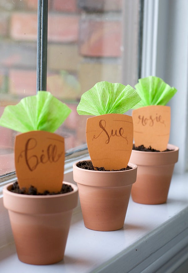 diy potted carrot place card party tablescape idea