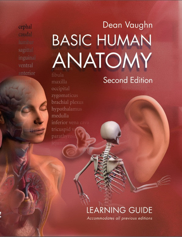 Basic Human Anatomy 2nd Edition Learning Guide Dean Vaughn Total