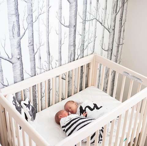 example of woodland themed gender-neutral nursery ideas with birch tree wallpaper