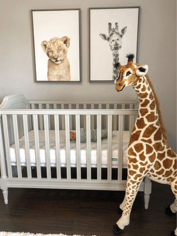 example of zoo-themed gender-neutral nursery ideas with giraffes and a lion cub