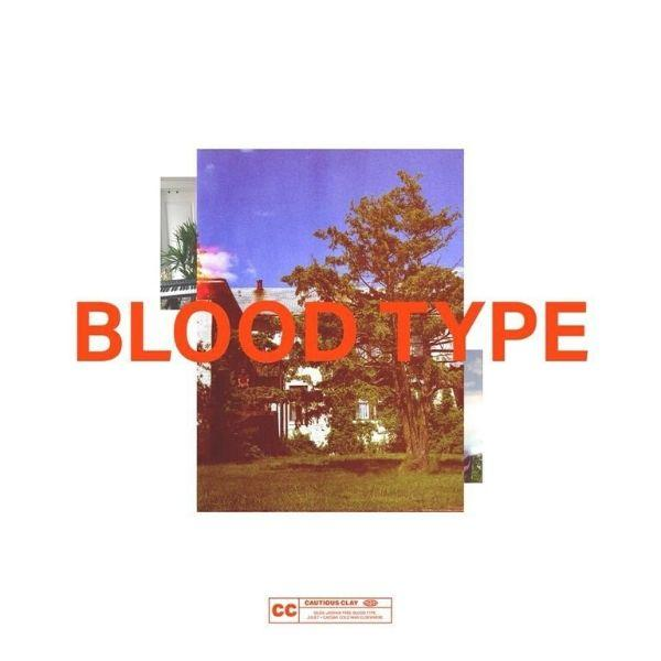 Cautious Clay // Blood Type-Cautious Clay-vinylmnky