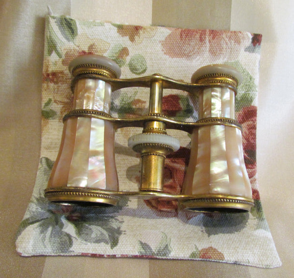 Antique LeMaire Fi Paris Opera Glasses 1800s Mother Of Pearl Binoculars Theater Glasses 1920s GrosGrain Box Purse