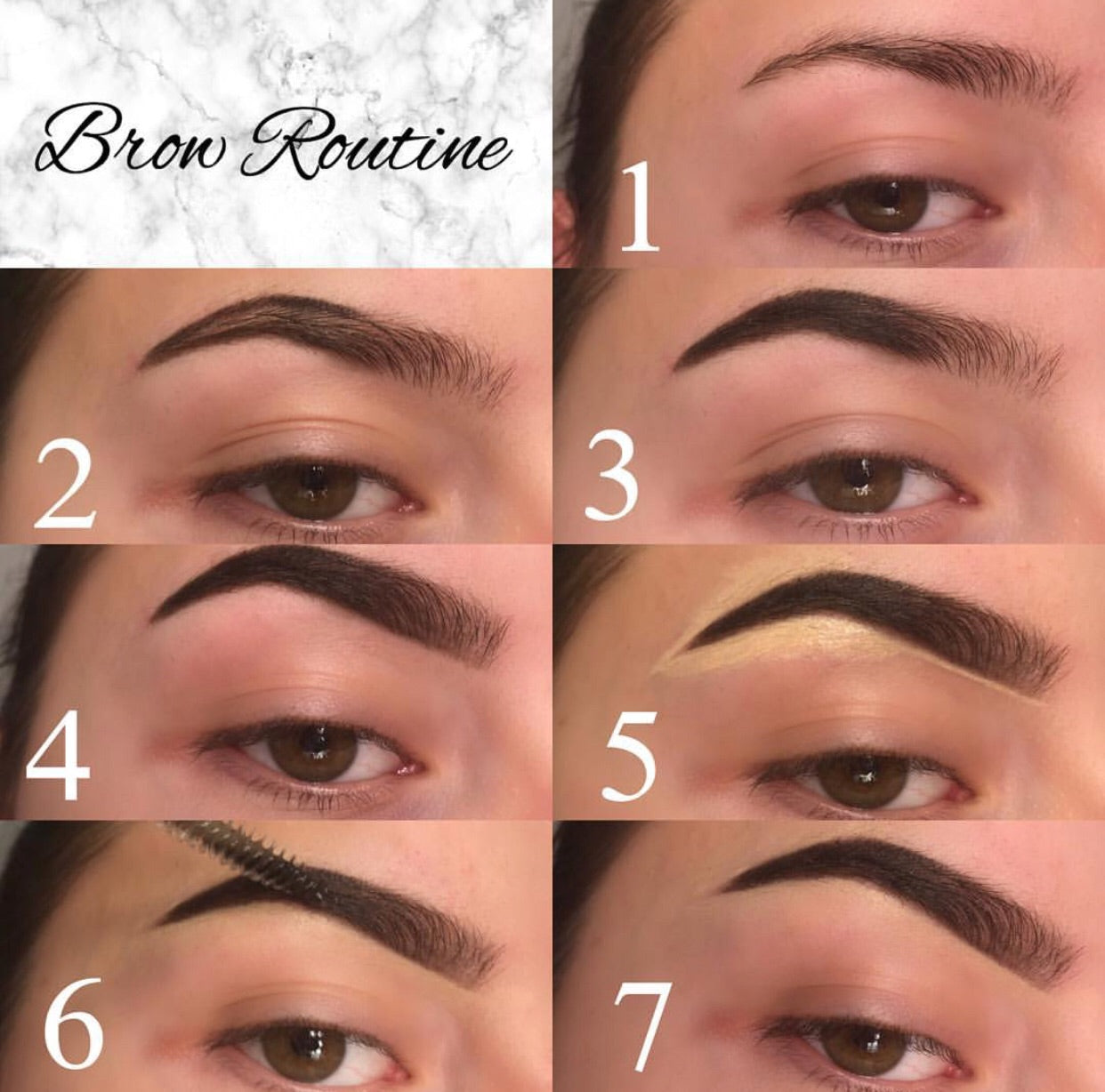 Brow Exquisite Pomade | Medium Brown