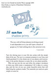 Sun Fun Shadow Prints - How to make a Sun Print