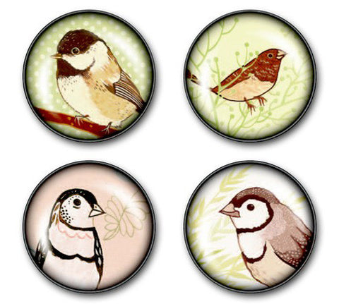Song Bird Magnet Set by Susie Ghahremani / boygirlparty.com