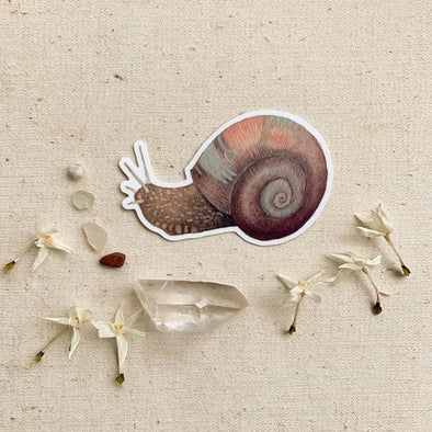 Snail - Sticker