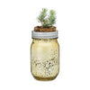 GARDEN JAR - SPRUCE PINT - WATERBURY