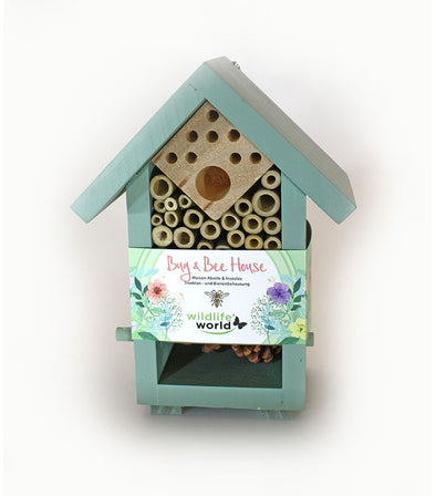Bug & Bee House