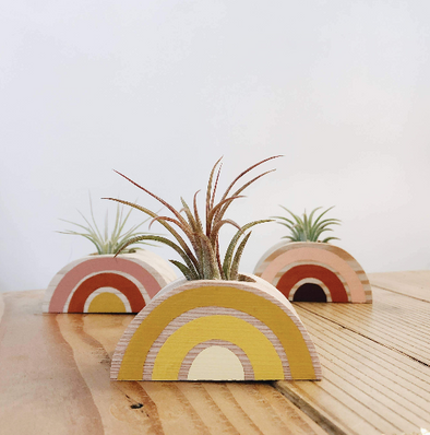 Rainbow Air Plant Holder (PLANT NOT INCLUDED)